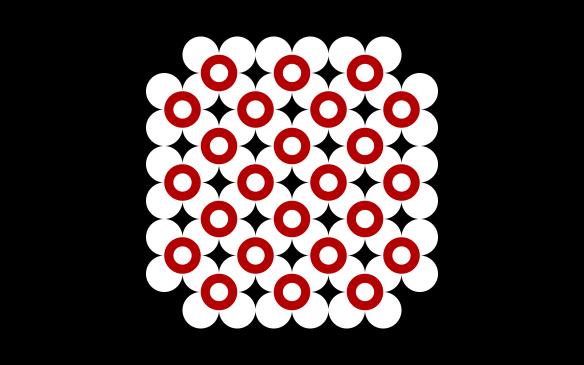 24-flores