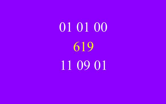 010100-619-110901