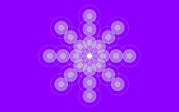 72-3-violeta